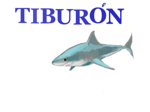 tiburon by darkcla