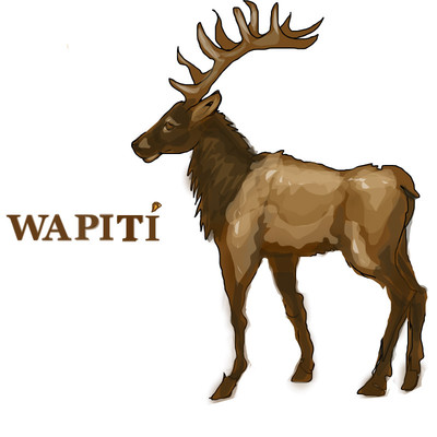wapiti by darkcla