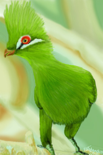 green bird great animal - photo #36
