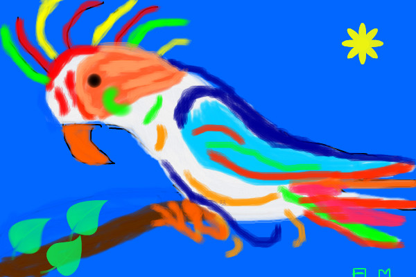 colorful-bird