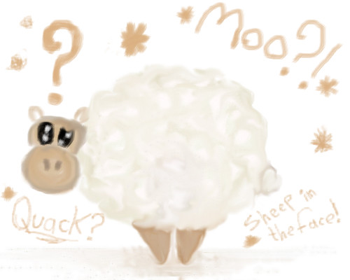 sheep-in-the-face