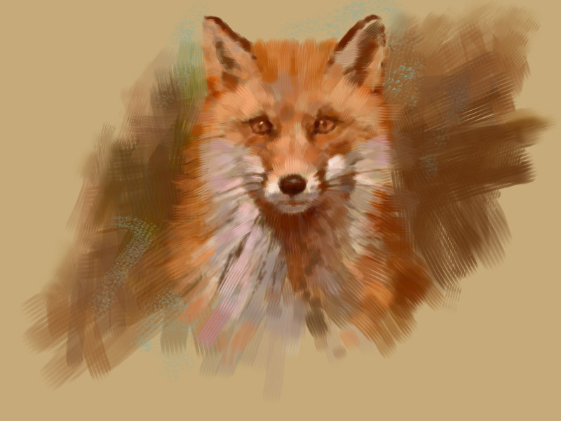 the-quick-red-fox