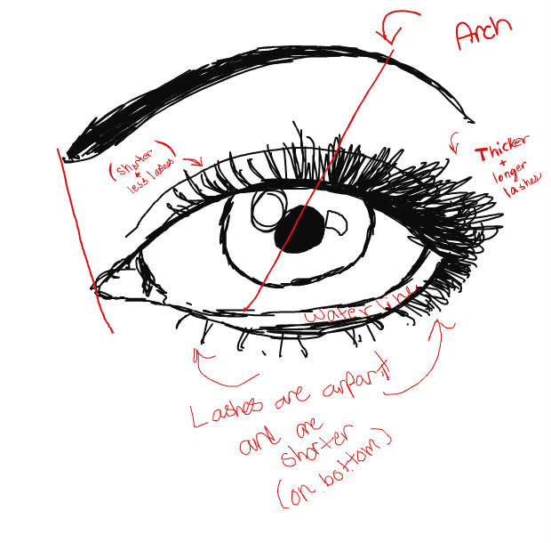 drawing-an-eye