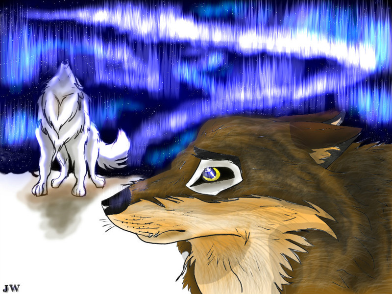 balto-and-aniu-fanart-