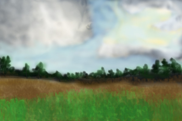 my-first-landscape