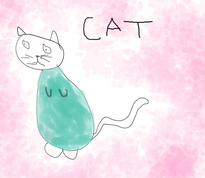 cat-by-sophia