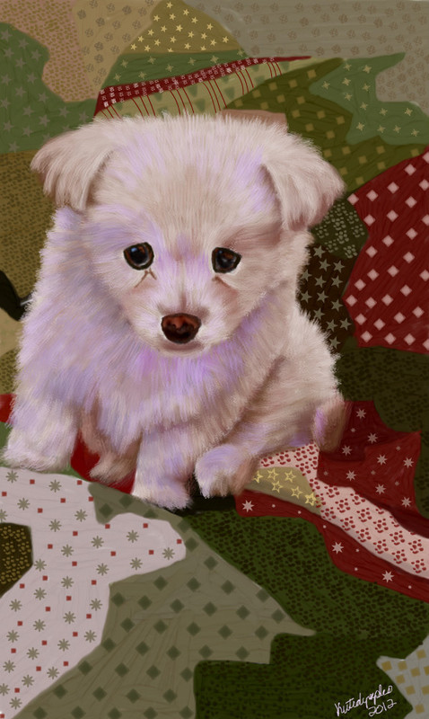 the-white-fluffy-puppy