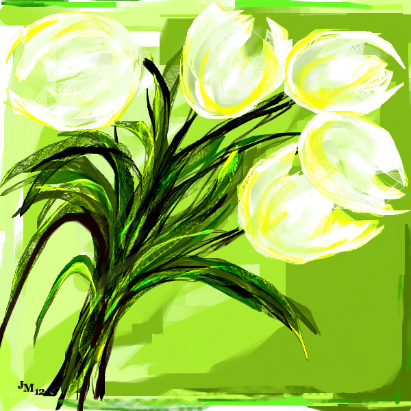five-white-tulips
