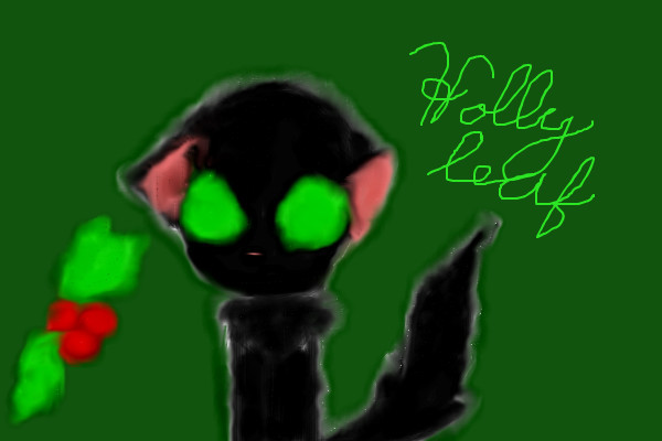 hollyleaf-do-not-look-