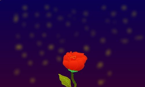 night-rose