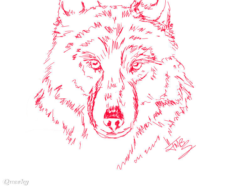 red wolf � an animals speedpaint drawing by jmbs77