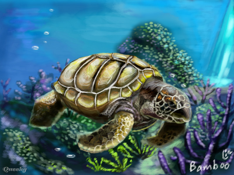 Sea turtle an animals Speedpaint drawing by Bamboo Queeky