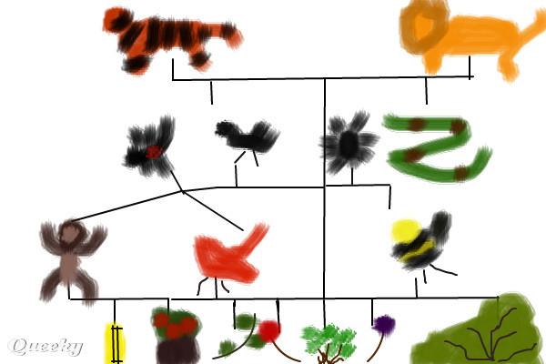 Amazon Rain Forest Food Chain Diagram http://www.pic2fly.com/Amazon ...