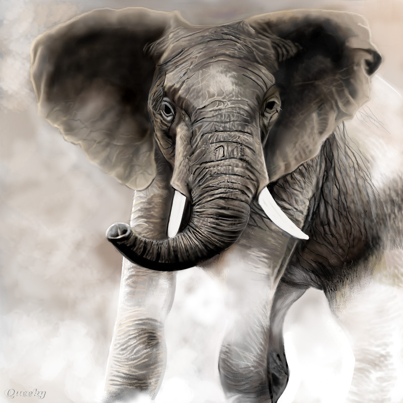 Elephant ← an animals Speedpaint drawing by Betty - Queeky ... Realistic Elephant Drawing