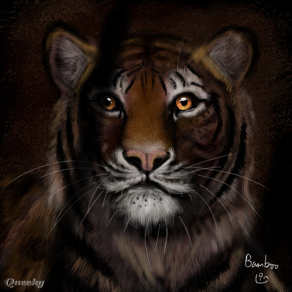 Tiger in cage an animals speedpaint drawing by bamboo queeky draw paint - Tiger in cage images ...