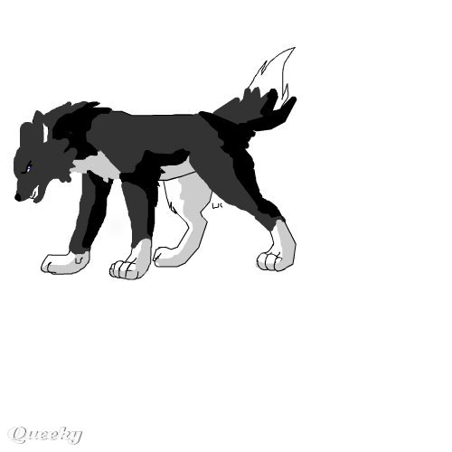anime wolf drawings. Animated Drawing :Customize in