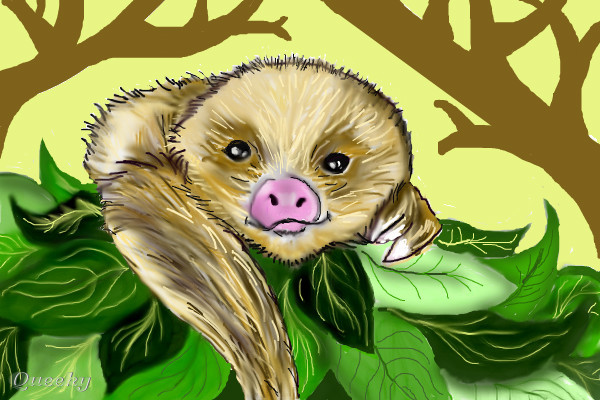 baby sloth � an animals speedpaint drawing by mudpuddle