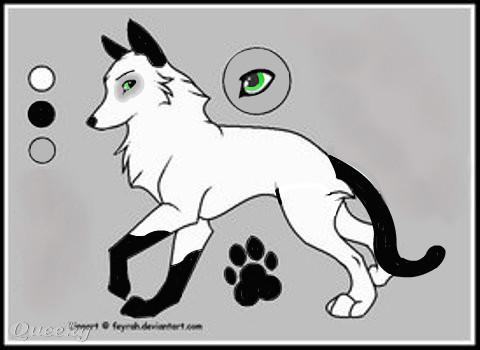 Sya The Wolf Cat Hybrid An Animals Speedpaint Drawing By