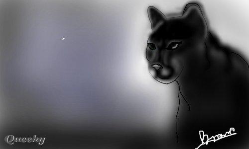 Black Puma An Animals Speedpaint Drawing By Bmmc