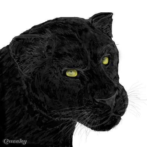 Black jaguar animal drawing - photo#25