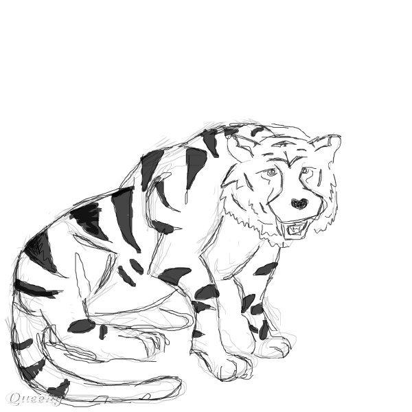 big cat  u2190 an animals speedpaint drawing by kyros