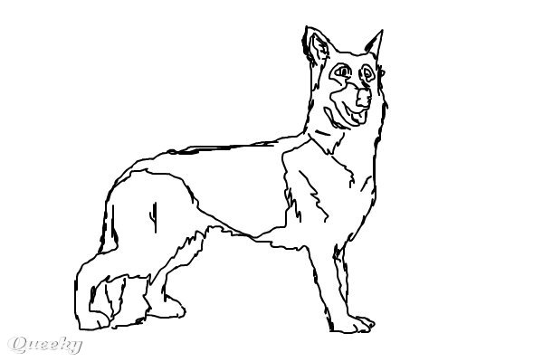 Black and white dog drawing - photo#21