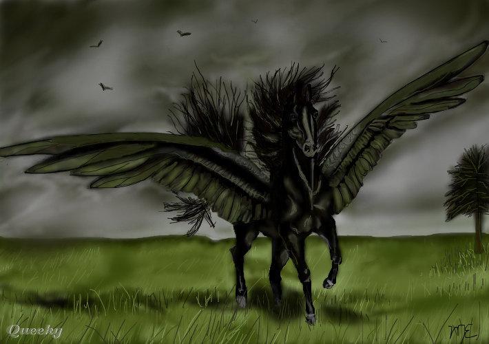 Black PegasusBlack Pegasus