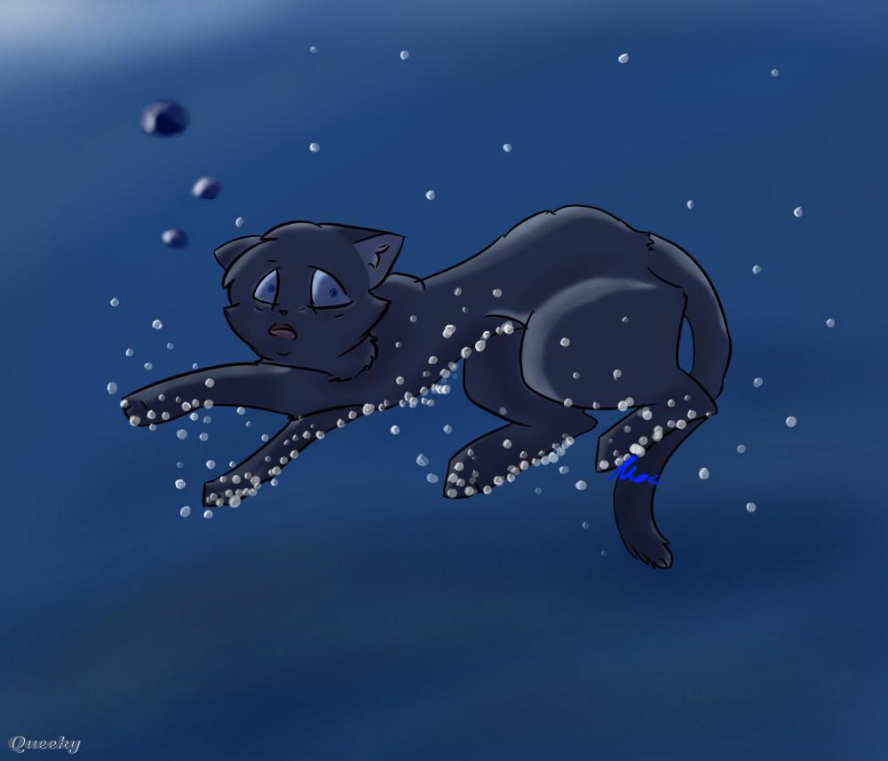 Bluestars Death A Other Speedpaint Drawing By Wolfa37