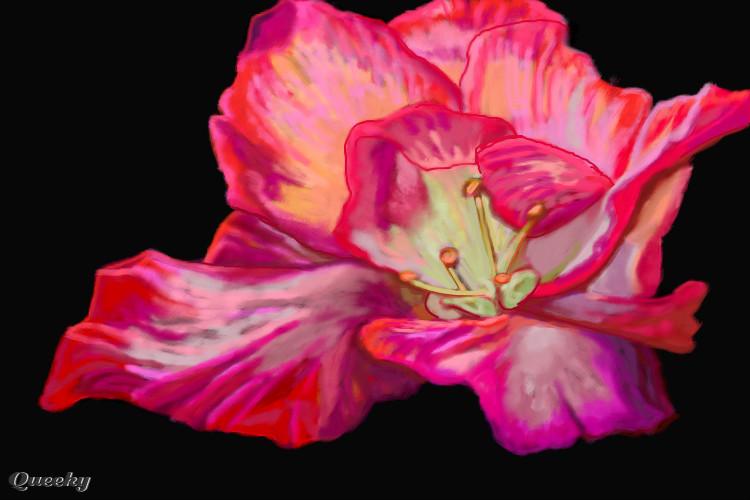 fantasy flower � a plants speedpaint drawing by betty