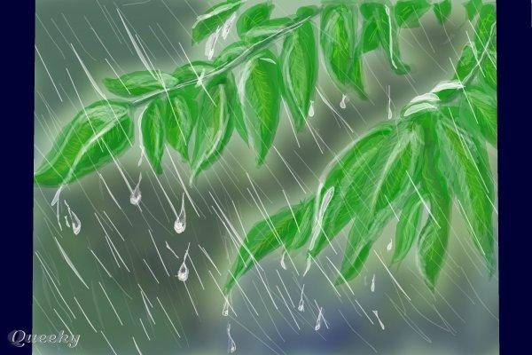 again in the rain  u2190 a plants speedpaint drawing by jokkio