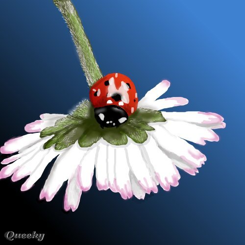 Realistic ladybug drawing - photo#9
