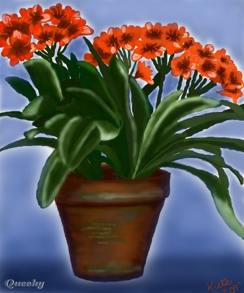 Orange Potted Flowers A Still Life Speedpaint Drawing By