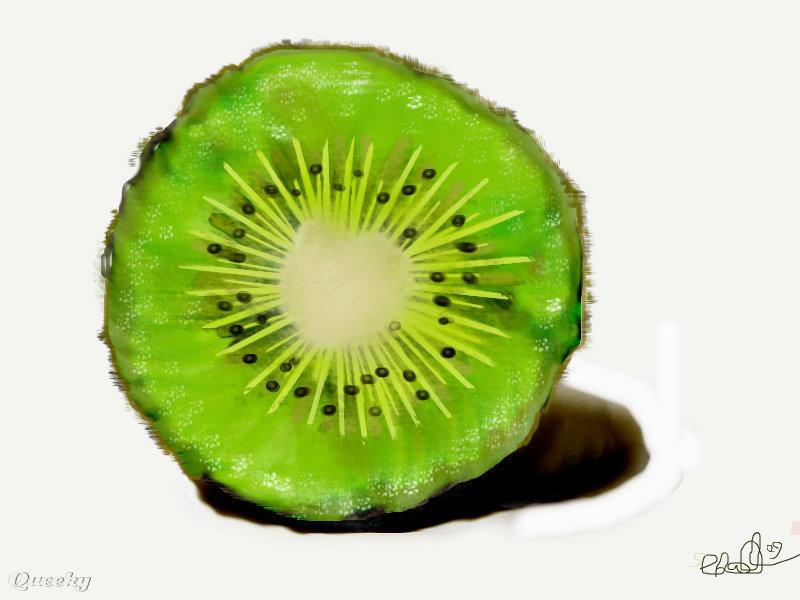 Kiwi Fruit Drawing Image Url