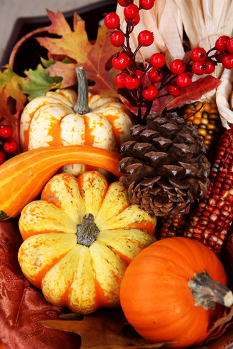 LuckyOliver-2755421-blog-thanksgiving_fall_harvest.preview.jpg