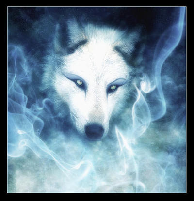 Alek Lazarev  Kiba-wolfs-rain-11068639-540-560_1.preview