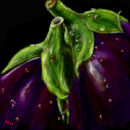 two-aubergines