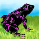 purple-painted-frog