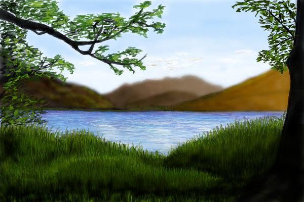 Grassy-shoreline